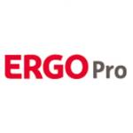 Als Logo der Referenzen bei Ergo Pro, ist ein zweifarbiges Logo zu sehen.